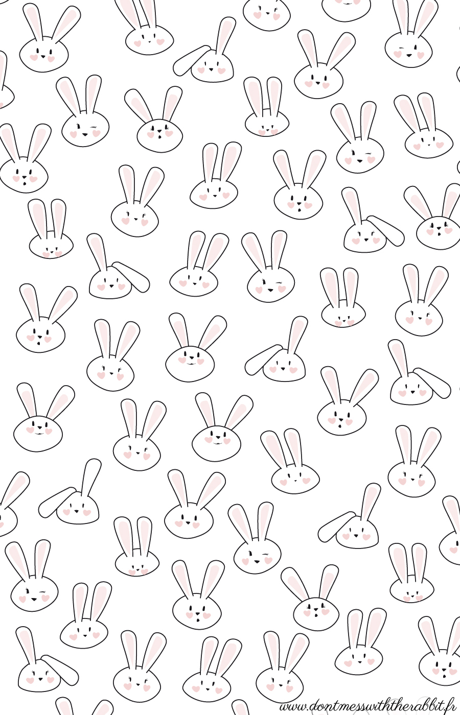 don 39 t mess with the rabbit do it yourself les lapins d avril. Black Bedroom Furniture Sets. Home Design Ideas