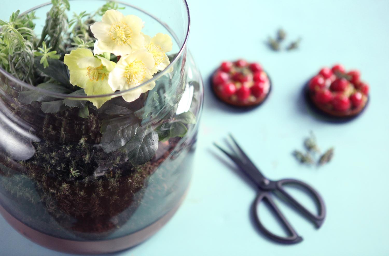 Don't mess with the rabbit - IKEA - COP21 - Terrarium tartelettes fraises thym1