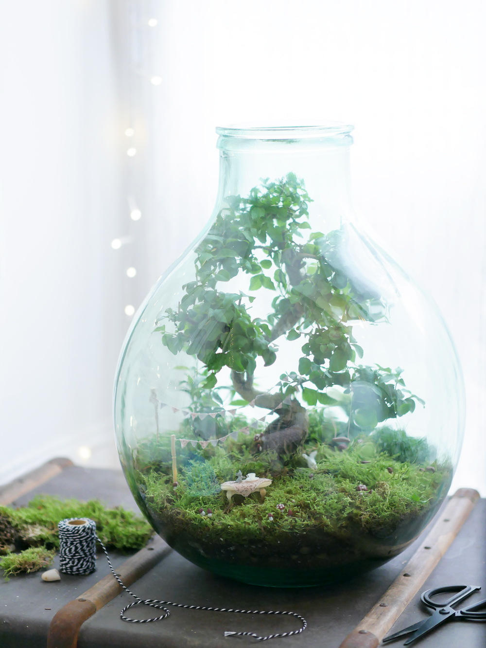 dont-mess-with-the-rabbit-terrarium-mini-jardin-de-fee-truffaut-1